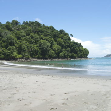 Manuel Antonio National Park How-To: Parking, Tickets, and Pack List